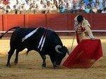 corrida__Small_