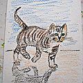 - dessins aux crayons - pastels à l'huile - chats -