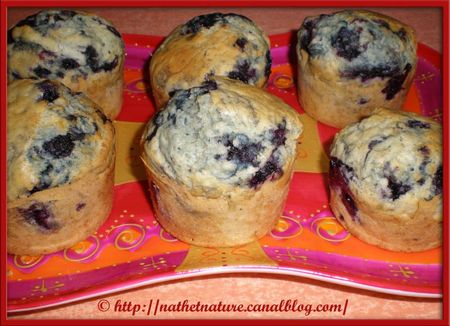 American blueberry muffins - 2