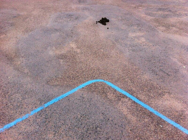 Nevers, parc Roger Salengro, ligne bleue