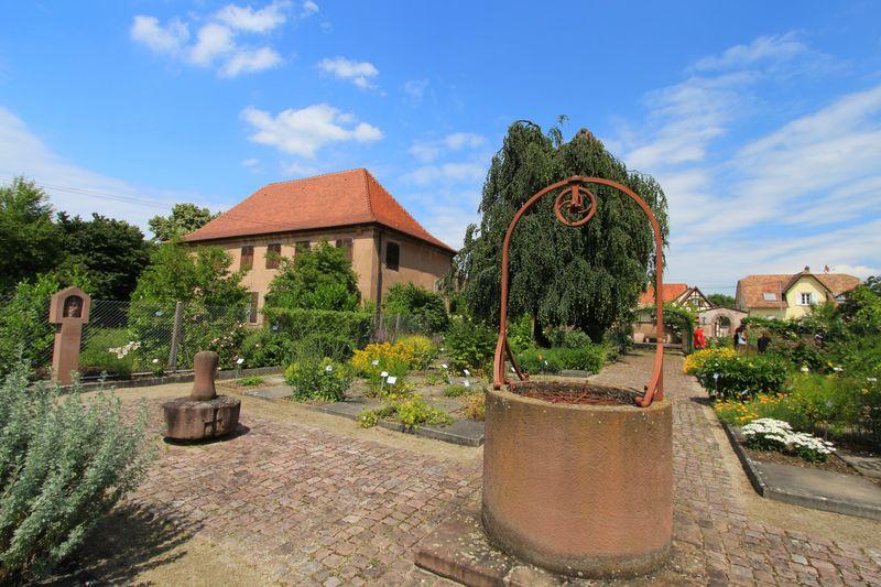 Eschau (5)