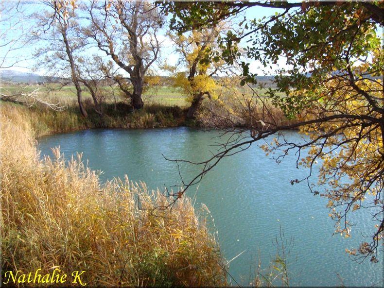_c_LNK_le_12_novembre_2010_022_copie