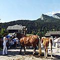 10 aout 2014 - concours chevaux de trait à st pierre de chartreuse (isère)