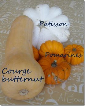 courges1 7 10 2010
