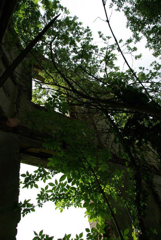 Maison abandonnée 1