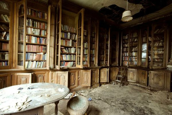 Berkyn Manor bibliotheque 2