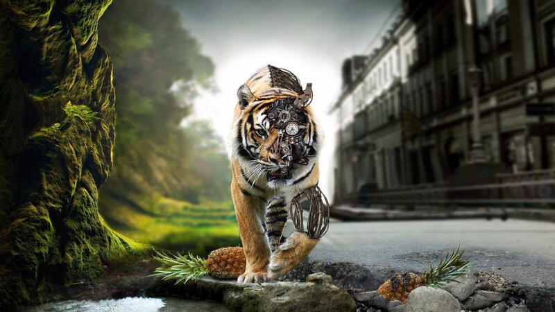 wallpaper-tiger-background-fantasy-wallwuzz-array