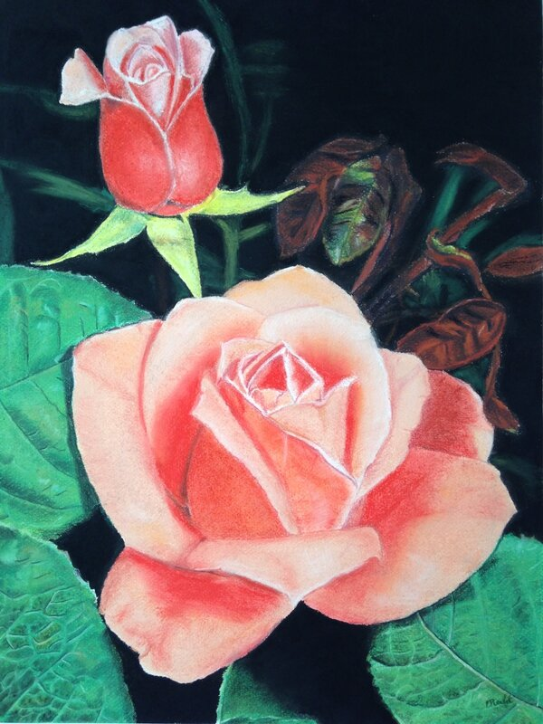 ma_rose