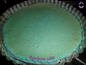 1011 Rainbow cake 2