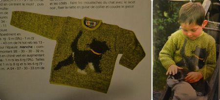le pull chat2