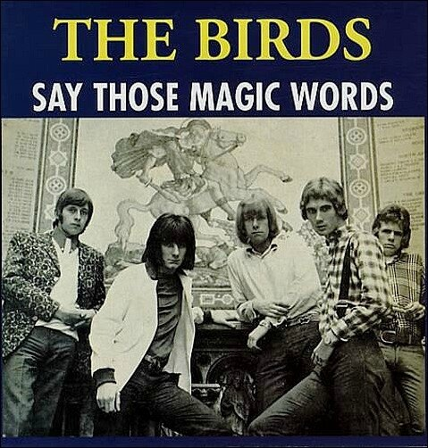 THE_BIRDS_SAY+THOSE+MAGIC+WORDS-330292
