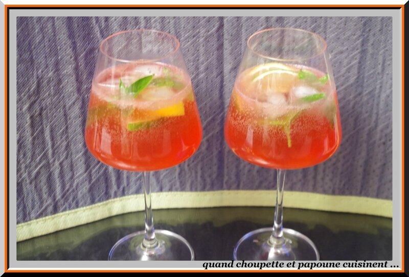 spritz au gin et basilic pourpre-5240