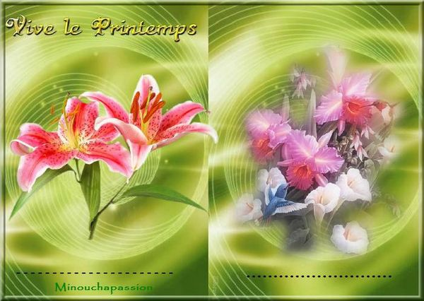 vivie le printemps5