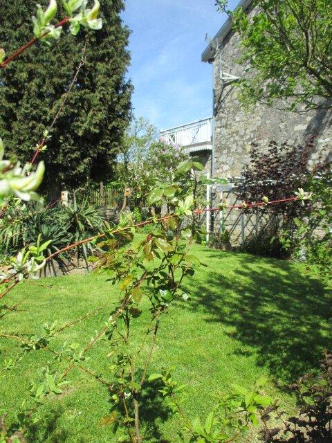 jardin 6 mai2016 095