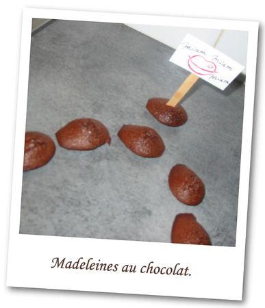 pr_sentation_madeleine_2_copier