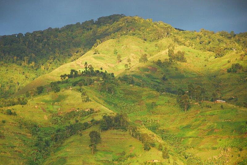 Ouganda (202)