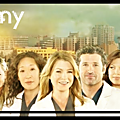 Saison 3 – épisode 20 : grey's anatomy