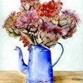 Fleurs d'artichauds