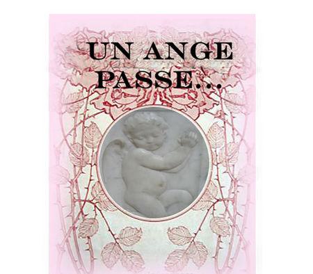 angepasse