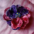 pensée velours broche