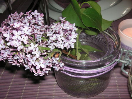 table_lilas_072