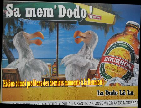sa_mem__DODO__R_solution_de_l__cran_