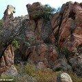 Calanche de Piana - Roche rouge
