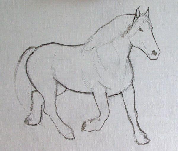 dessin cheval comtois
