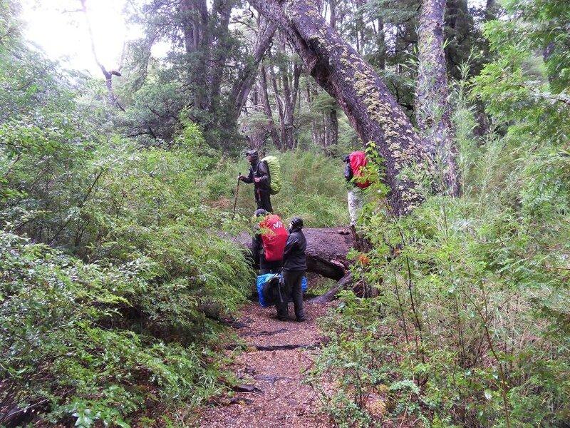 Embuches en territoire Mapuche