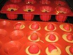 Mignardises_aux_fraises_du_jardin_et_aux_m_res_sauvages_014