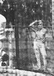 1961_03_florida_yankees_camp_01_2