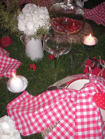 table_picnic_011