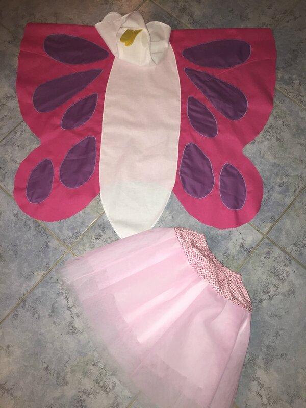 Papillon rose et violet