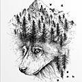Alfred basha - animaux et paysages
