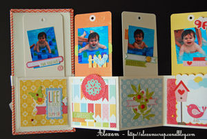 Alexam_mini_tags_lift_ES_Fabric_S_RDV_Scrap_4