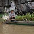 Ninh Binh, Baie d'Halong terrestre, vendeur d'orchides