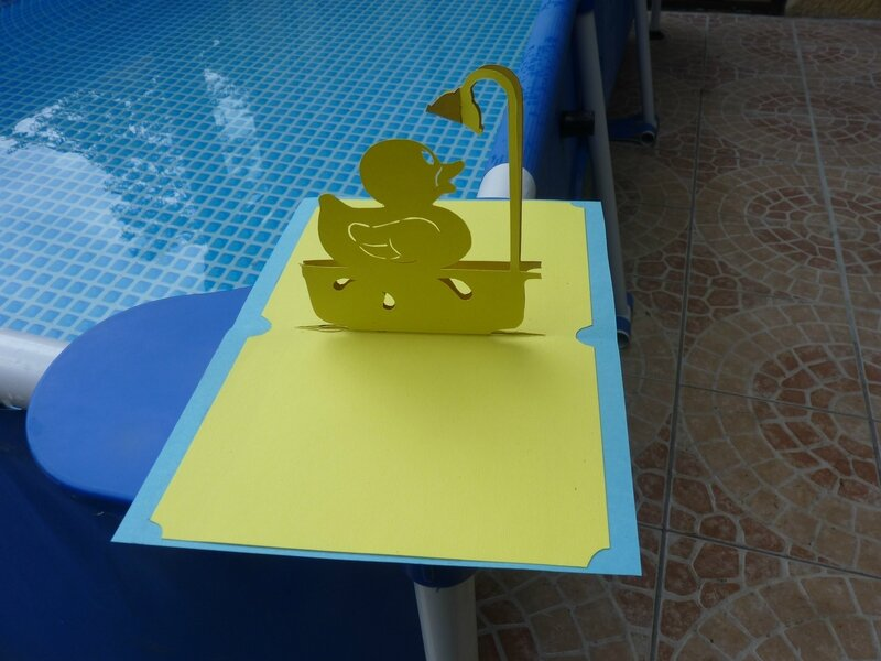Carte canard (2)