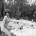 jayne_pink_palace-pool-1961-10-28-LA-home-1