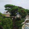Tree for Gnouf & Nikash