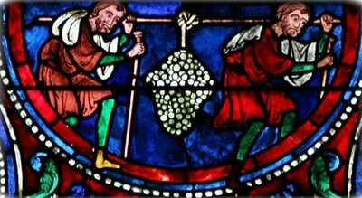 Helena willems sampler 1817 1 07
