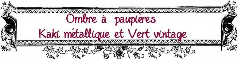 Etiquette Ombre paupières Kaki métallique -vert vintage