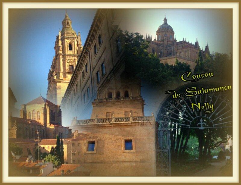 Coucou de Salamanca juil 2016 Rose63
