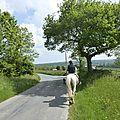 balade à cheval médiévale - Abbaye de Hambye (77)