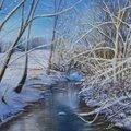 Le drugeon , un jour d'hiver ( franche comté)