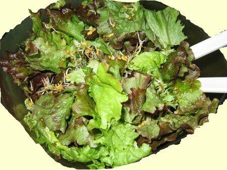 Salade_verte
