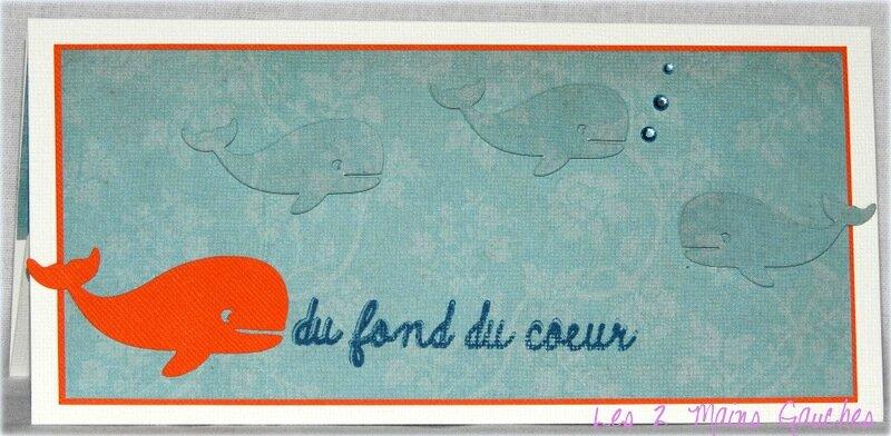 carte porte-billet avec baleines
