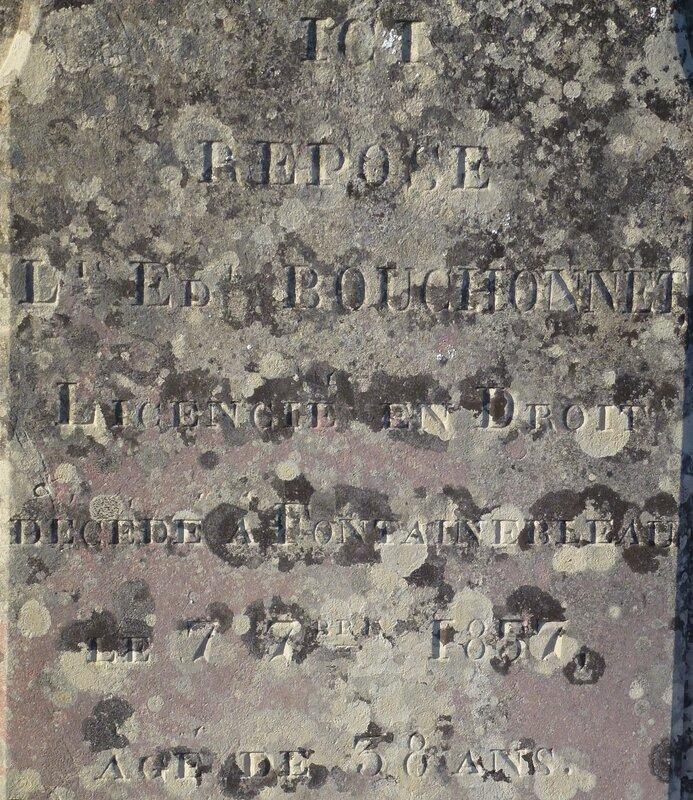 P1150383 - Copie