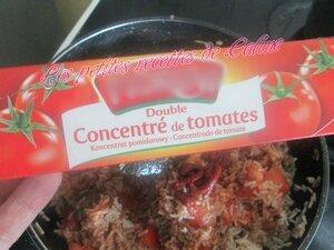 Wok de riz bolognaise28