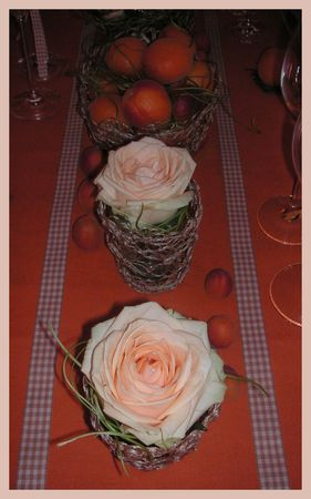 2009_07_07_table_abricots21