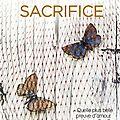 Beautiful sacrifice [les frères maddox #3] de jamie mcguire